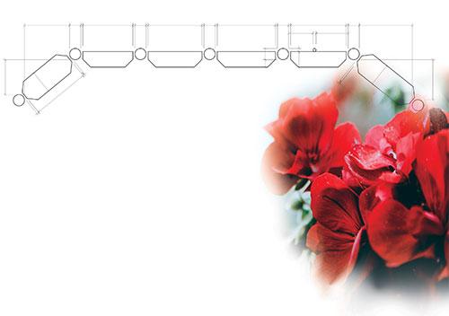 Planter-&-flowers-copy
