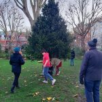 Christmas-Tree-erection